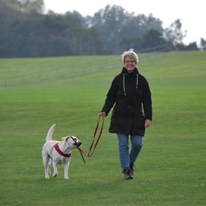 Einzeltraining Hundeschule Schenefeld
